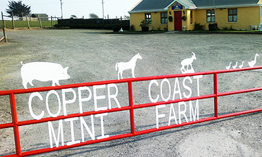 Copper Coast Mini Farm