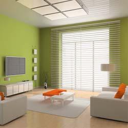 tara blinds